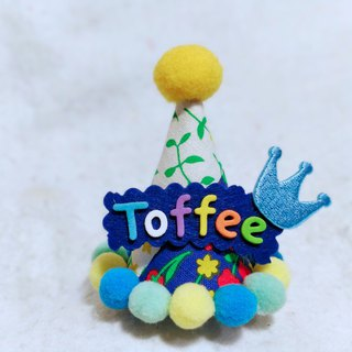 Birthday star birthday star name pet birthday hat