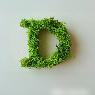 "Wooden alphabet objects (Moss) 5cm ""D"" × 1 point"