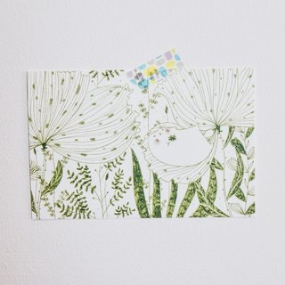 Cat green _ spring afternoon / postcards