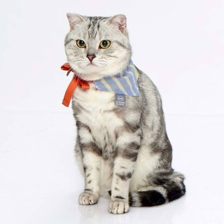 Pet scarf Orange Blinks blue and white striped light yellow S/M/L (M sold out)
