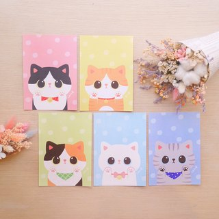 ChiaBB cute fat cat star / illustrator postcard (5 groups)