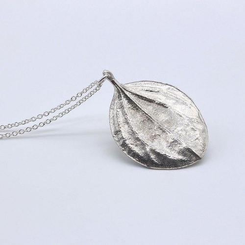 Parallel Peperomia Leaf Silver Necklace - Nature Plant