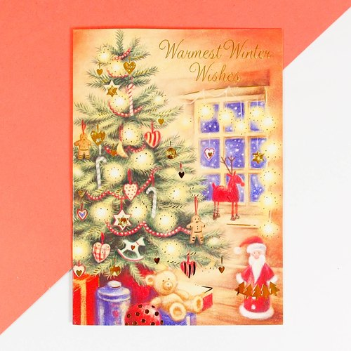 SL 10 Christmas cards into a combination package