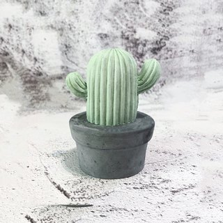 Cactus potted diffused stone