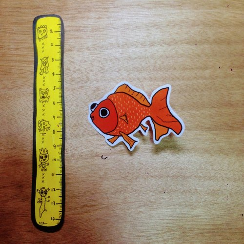 571 / water goldfish