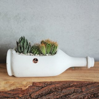 Peas succulents and small groceries - handmade clay pots with the creation of a series - bottle An An _ Xianxian combination
