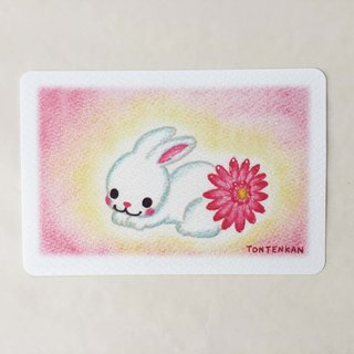 Flower rabbit postcard no.120
