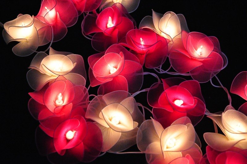 20 Pink tone Flower String Lights for Home Decoration Weddind Part Bedroo Patio and Decoration