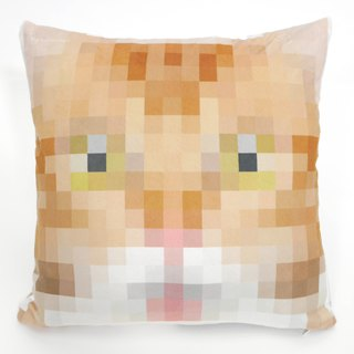 Ginger & Chimera Cat Cushion Cover