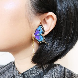 Miss Paranoid paranoia blue purple swallowtail butterfly resin earrings unilateral sale 925 silver needle