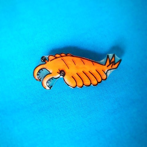Brooch of Anomalocaris