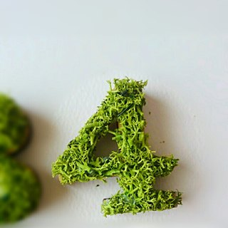 "Wooden numbers objects (Moss) 5cm ""4"" × 1 point"