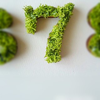 "Wooden numbers objects (Moss) 5cm ""7"" × 1 point"