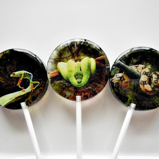 Creative lollipops - the nature of ecology