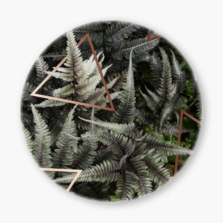 Snupped Ceramic Coaster - Fern Art