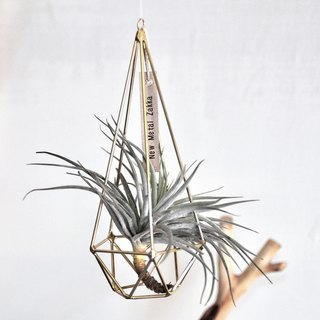 Air pineapple / floating ornament / diamond / golden / medium