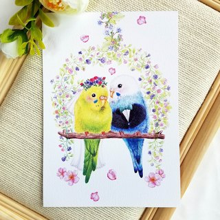 Postcard - a parrot wedding
