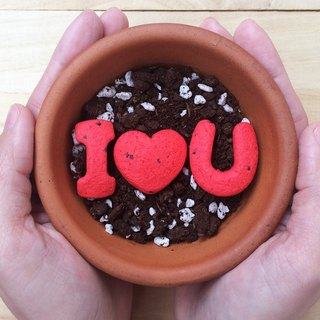 I Love U Letter Seed Ball Planting Group Lover Gift/Thank You/Mother's Day