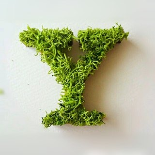 "Wooden alphabet objects (Moss) 5cm ""Y"""