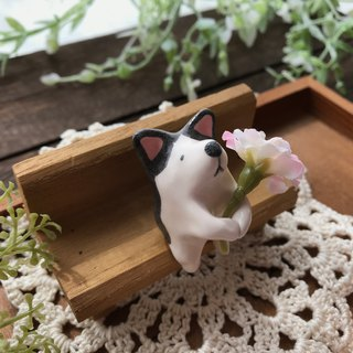 Corgi and Flower 1