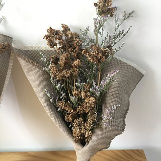 Ghost buckwheat flower dry bouquet
