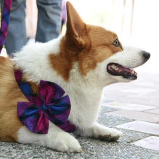 Classic Plaid Boutique bow for Pet Harness【ZAZAZOO】