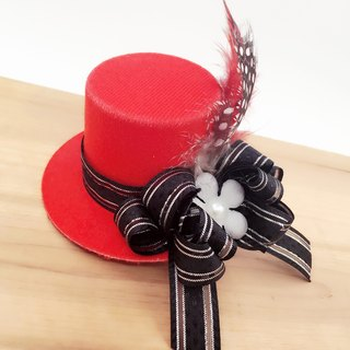 Red stylish hat. Hairpin