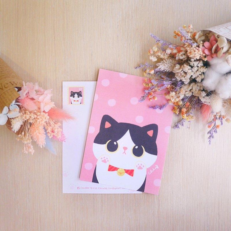 ChiaBB 可愛胖胖貓星人 / 插畫明信片 (五種花色)