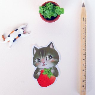 Fish cat / waterproof sticker / Miss Strawberry