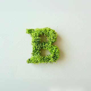 "Wooden alphabet objects (Moss) 5cm ""B"" × 1 point"