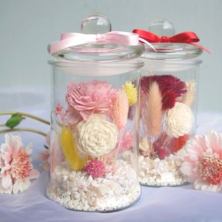 Sweet Time - Fragrance Powder Sun Rose in Glass Bottle Dried Flower Birthday / Valentine's Day / Tanabata