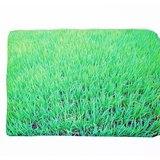 水稻---電腦保護套 13吋