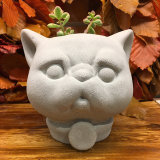 Flat face cat - Pen case / Pots