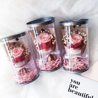 Journee Gentle pink immortal rose flower jar with card pink dry bouquet