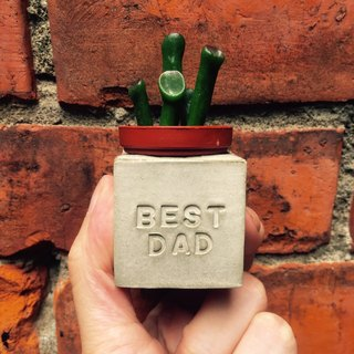 Father's Day gift. Best Dad's best dad. Meaty magnet potted plants