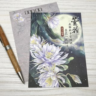 [Under the fragrance] Epiphyllum postcards