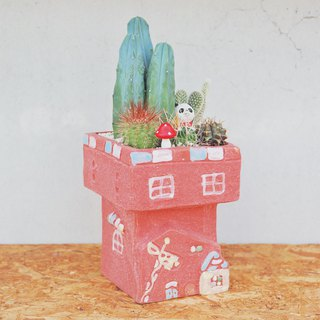 Peas Succulent Plant With Small Groceries - Red Castle Cactus Combination