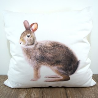 Taiwan Hare Pillow - Male Rabbit - 50cm