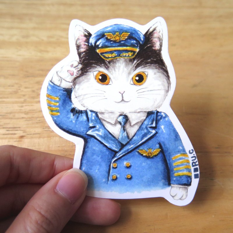 My volunteer: cat and cat plane sticker