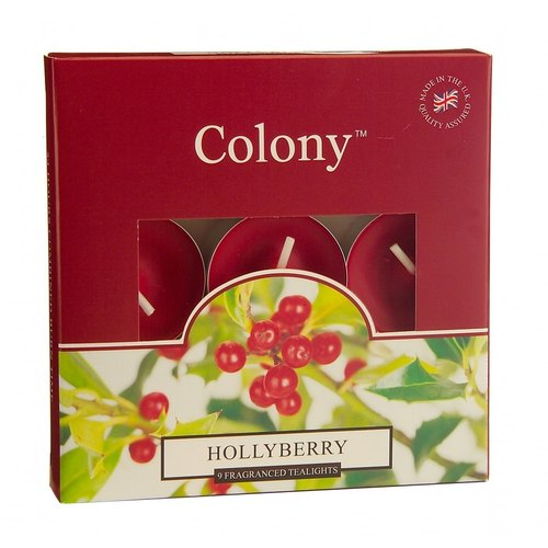 British Candle Colony Series - Winter Fruit Mini Candle 9 In