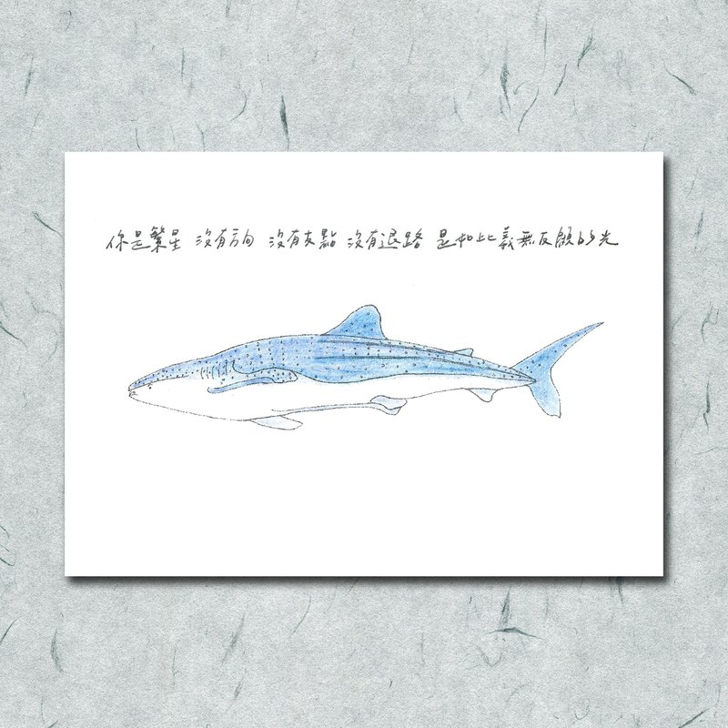 Animal with its poem 28 / whale shark / hand-painted / card postcard