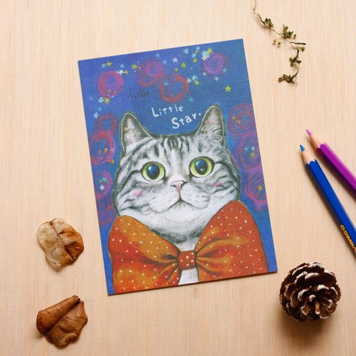 """Thirteen meow illustrator"" small star ☉ cat ☉ illustration postcard"