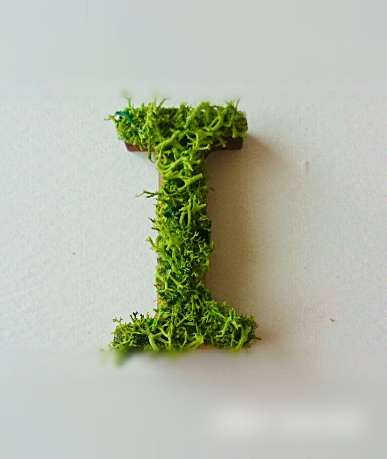 "Wooden alphabet objects (Moss) 5cm ""I"" × 1 point"