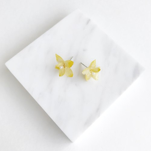 [Fleur d'amour] Real flower Hydrangea (Yellow) earrings S925 Silver