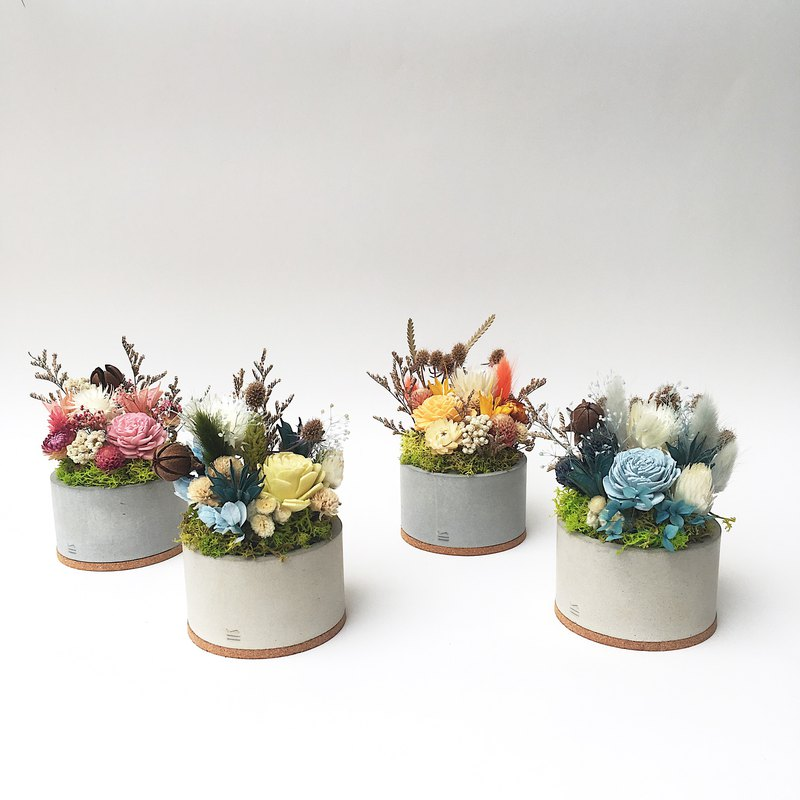 Dry flower*pot flower*housewarming gift*opening flower gift*birthday flower gift*fragrant flower*(four colors optional)
