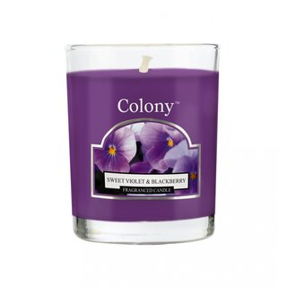British fragrance Colony series violet and blackberry jar glass candle