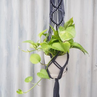 Macrame plant hanger / Curve /Home Decor / Greenery / Deep blue