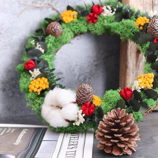 Reindeer moss reindeer moss wreath __Christmas limited / hand made wreath