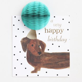【caroline gardner】Pom Pom a very happy birthday dog card