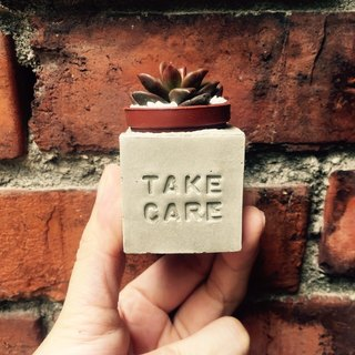 Take care Take care 💪 ~! Magnet potted succulents